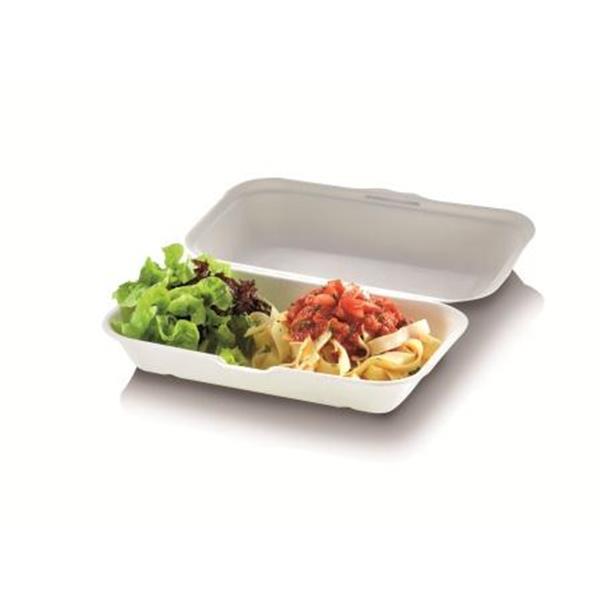 naturesse Zuckerrohr Food Box mit Klappdeckel extra gross 23,5x19,5cm, 7,5cm tief